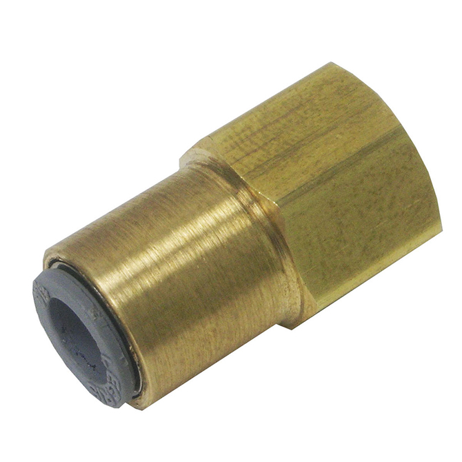 Female Flare Brass Adapters